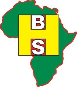 Black History Studies Logo
